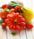 Différentes variétés de tomate avec le basilic Photographie stock libre de droits