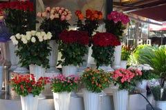 Différents bouquets des roses disponibles pour la vente Photos stock