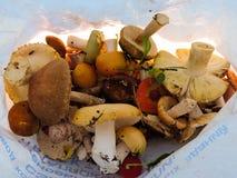 Différents champignons dans un sachet en plastique Photo libre de droits