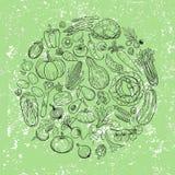 Différents dessins de légumes Photos stock