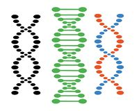 Différents ensembles d'ADN de spirales sur un fond blanc Éléments de vecteur pour votre conception illustration stock