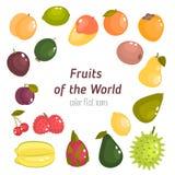 Différents fruits des icônes plates de couleur du monde réglées Image libre de droits