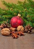 Différents genres d'épices, d'écrous et de cônes, décorations de Noël Photos libres de droits