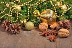 Différents genres d'épices, d'écrous et de cônes, décorations de Noël Images libres de droits