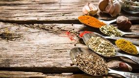 Différents genres d'épices dans des cuillères Sur le fond en bois photographie stock libre de droits