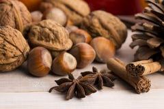 Différents genres d'épices, de noix et d'oranges sèches Photo stock