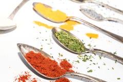 Différents genres d'épices sèches sur des cuillères en métal Photo stock