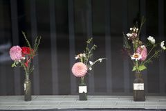 Différents genres de bouquets des dahlias et des feuilles d'eucalyptus dans des bouteilles de vintage comme décoration de fenêtre Images stock