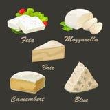 Différents genres de fromage blanc Illustration réaliste de vecteur Image libre de droits