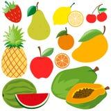 Différents genres de fruits organiques Illustration Libre de Droits