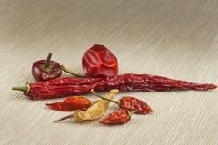 Différents genres de poivrons de piment secs Poivrons de /poivron rouge secs Épices chaudes à la nourriture Images libres de droits