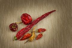 Différents genres de poivrons de piment secs Poivrons de /poivron rouge secs Épices chaudes à la nourriture Photos libres de droits