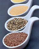 Différents gruaux dans cuillères en céramique Photo stock