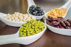 Différents haricots dans la cuillère blanche Photo stock