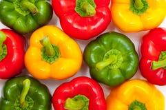 Différents poivrons colorés Image stock