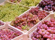 Différents raisins dans une boîte en bois Image stock