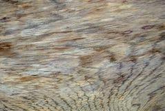 Différents textures et milieux en bois CXI photos stock