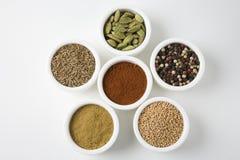 Différents types d'épices dedans disposées dans des cuvettes Images stock