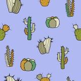 Différents types de cactus stylisés décoratifs sur un fond bleu illustration de vecteur