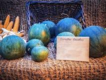 Différents types de potirons sur un compteur en bois potiron d'automne sur une table en bois Potiron pendant des vacances Images libres de droits