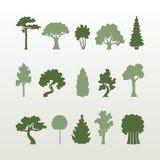 Différents types de vecteur d'arbres illustration de vecteur