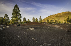 Difference color of land on Sunset Crater Volcano Stock Images