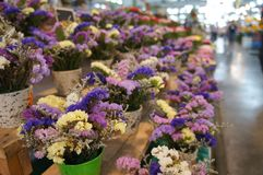 Flowers in the flower market. The difference flowers in the flower market Royalty Free Stock Photo