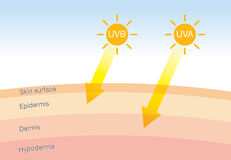 The difference of radiation 2 types in sunlight with skin. The difference of radiation 2 types in sunlight which is harmful to the skin.Illustration about UVA Royalty Free Stock Photos