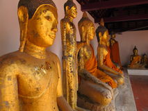 Difference type of Buddha statues. Combination of the variety type of Buddha statues in Thai temple Stock Images