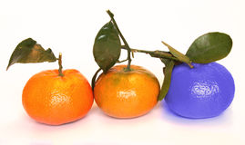 Different. Being different than and standing out from the others (tangerine style Royalty Free Stock Photography