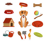 Different accessories for domestic pet. Dog in house. Vector illustrations set Stock Photos