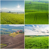 Different Agricultural Landscapes Royalty Free Stock Images