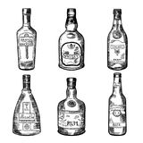 Different alcoholic drinks in bottles. Vector illustration in hand drawn style. Sketch of bottles absinthe, rum and cognac Stock Photos