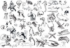 Different animals. Collection - the animals from different locations, environments and times. Drawing a black marker with a hard tip Stock Image
