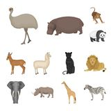 Different animals cartoon icons in set collection for design. Bird, predator and herbivore vector symbol stock web. Different animals cartoon icons in set Stock Image