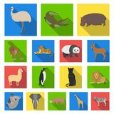 Different animals flat icons in set collection for design. Bird, predator and herbivore vector symbol stock web. Different animals flat icons in set collection Royalty Free Stock Image