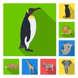 Different animals flat icons in set collection for design. Bird, predator and herbivore vector symbol stock web. Different animals flat icons in set collection Royalty Free Stock Photos