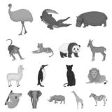 Different animals monochrome icons in set collection for design. Bird, predator and herbivore vector symbol stock web. Different animals monochrome icons in set Royalty Free Stock Photos