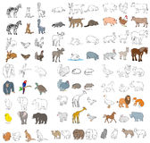 Different animals set Stock Images