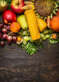 Different autumn harvest fruits with a sunflower and ear of corn on a wooden background, close up,top view,frame Royalty Free Stock Images