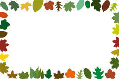 Different autumn leaves as a frame Royalty Free Stock Photography