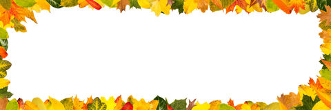 Different autumn leaves as panorama frame Stock Photography