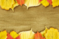 Different autumn leaves opn gold wood plank Stock Photo