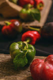 Different autumn vegetables Royalty Free Stock Photos
