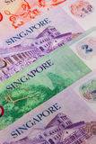 Different banknotes from Singapore Royalty Free Stock Photos