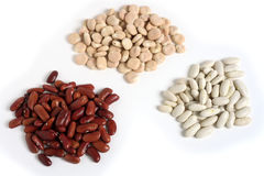 Different beans Royalty Free Stock Photo