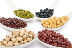 Different beans Stock Photography