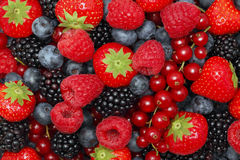 Different berries. Background Royalty Free Stock Image