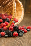 Different berries in a basket on a wooden table Stock Photography