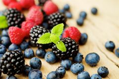 Different berries stock image